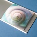 Snip Foto- und Postkartenhalter
