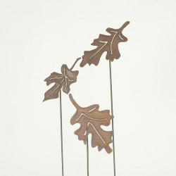 Set 3 Herbstblätter Eiche
